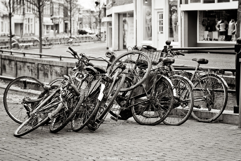 Oude fietsen uit de gracht