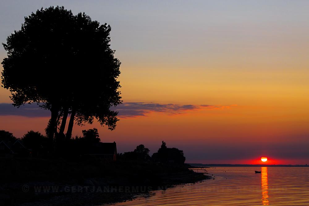 zonsondergang met boom
