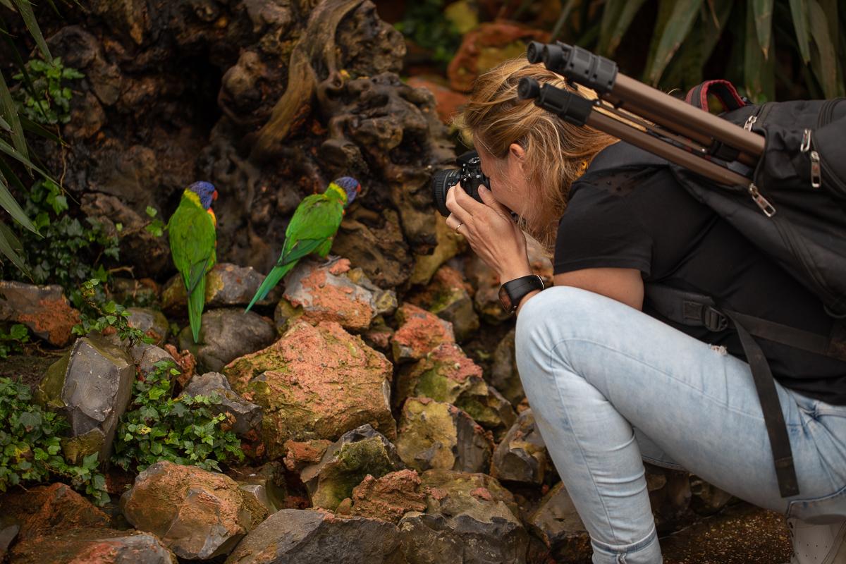 workshop fotografie orchideeenhoeve